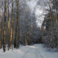 Последним месяцем зимы... :: Лесо-Вед (Баранов)