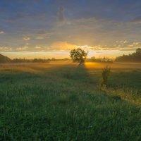 В восход средь пойменных лугов. :: Igor Andreev