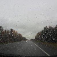 Этот дождливый день :: Кэт Ви