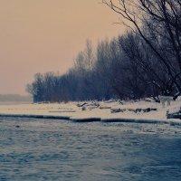 В ожидании весны :: Олег