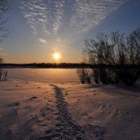 Зима :: Наталья Жукова