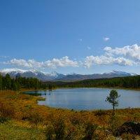 На высокогорном озере. :: Валерий Медведев