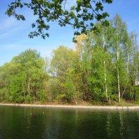 Островок в парке :: Дмитрий Никитин
