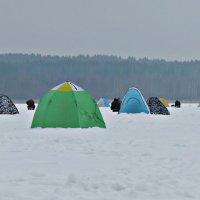 Палатки :: Михаил Цегалко