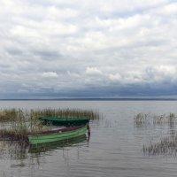 Плещеево озеро :: Александр Войтович