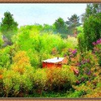 Весеннее цветение :: Владимир
