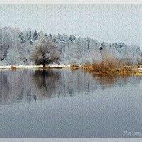 Не замерзшая речка :: Лидия (naum.lidiya)
