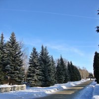 Синева неба зимой :: Лидия (naum.lidiya)