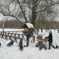 Зима в парке. :: Ирина Токарева