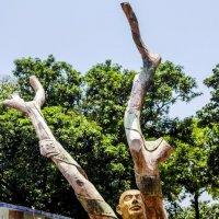 Калькутта.Киноцентр.Вторая жизнь дерева... :: Михаил Юрин
