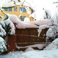 Зима не сдается! :: Григорий Кучушев