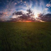 Величие полей :: Kirill Tureev