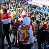 Болеем за наших Олимпиада 2014 :: Вячеслав Случившийся