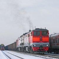 Грузовой поезд под тепловозом 2ТЭ10М-2082 на станции Зональный. :: Иван Зарубин