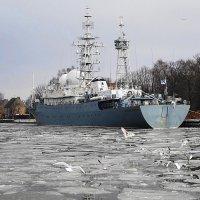 В гавани :: Маргарита Батырева