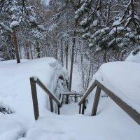 Зима в Карелии. :: Ирина Лебедева