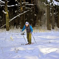 Лыжная прогулка в лесу. :: Татьяна Помогалова