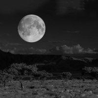 Намибиа.  Африка :: Jakob Gardok