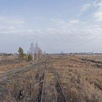 Подъездные пути от станции Чемровка недалеко от г. Бийска :: Иван Зарубин