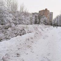 Эту зиму Москва запомнит надолго :: Владимир Прокофьев
