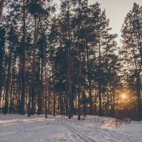 Зимний пейзаж :: Евгений Майоров