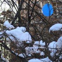 ... а шарик вернулся, а он голубой... :: Tanja Gerster