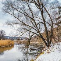 Зимнее спокойствие :: Игорь Сарапулов
