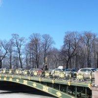 СПб.Пантелеймоновский мост. :: Таэлюр