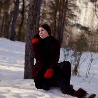 зимняя сказка :: Elena Каримова