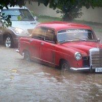 Тропический ливень :: Олег Гаврилов