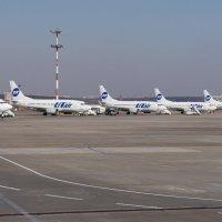 Боинги 737 а/к UTэйр во Внуково. :: Alexey YakovLev