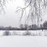 Зимний день :: Сергей Добрыднев