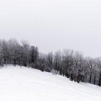 Зима :: Сергей Добрыднев