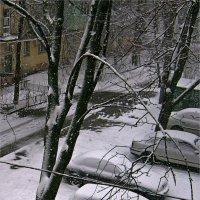 Весна временно отменяется ) :: Людмила