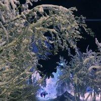 Зимний вечер :: Ольга