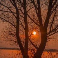 Садится солнца диск устало... :: Виктор Малород