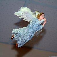 Она любила летать по ночам... :: Андрей Заломленков