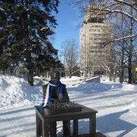 Памятник шахматисту Кересу :: veera v