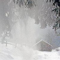 снежит... :: Natali D