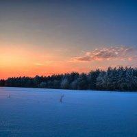 Зимний рассвет :: Сергей Шаталов