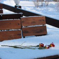 Кафе, зима, розы :: Людмила Самойлова