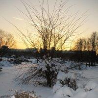 зима :: Зинаида