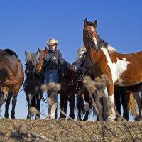 Ксения с лошадьми :: Ольга Милованова