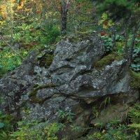 Старый камень :: Алексей Коган