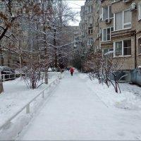 Редкие снимки южной зимы :: Надежда