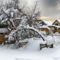 Зима выдалась и снежная, и морозная...! :: Ирина Шарапова
