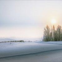 Утренняя картинка... :: Александр Никитинский