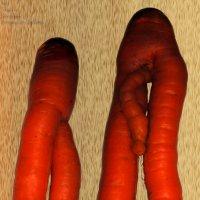 """Любовь - Морковь:  """"Инь и Янь! :: Aleks Ben Israel"""