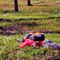 Товарищи фотографы! Весна на пороге! Делаем зарядку и готовимся к новым фотосессиям :) :: bajguz igor