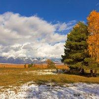 Яркие краски осени :: Анатолий Иргл